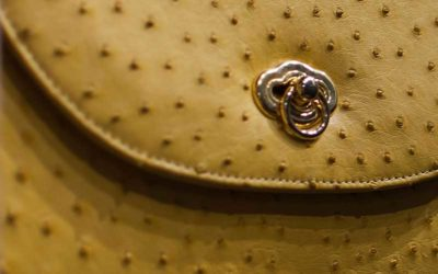 gallery-ostrich-leather-handbag-yellow-modern-and-tribal