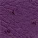 Ostrich - Purple