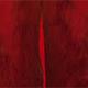 Springbok - Red